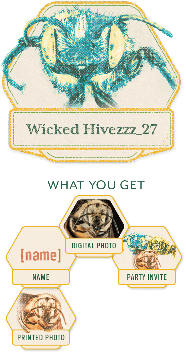 Wicked-Hivezzz_27