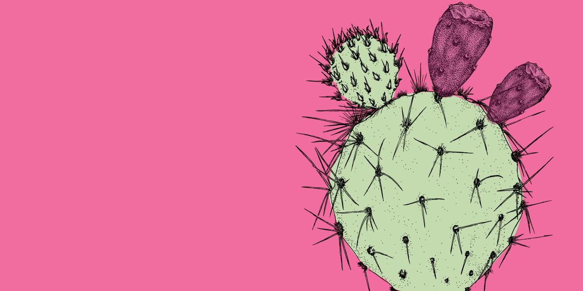 prickly_pear_banner-website2