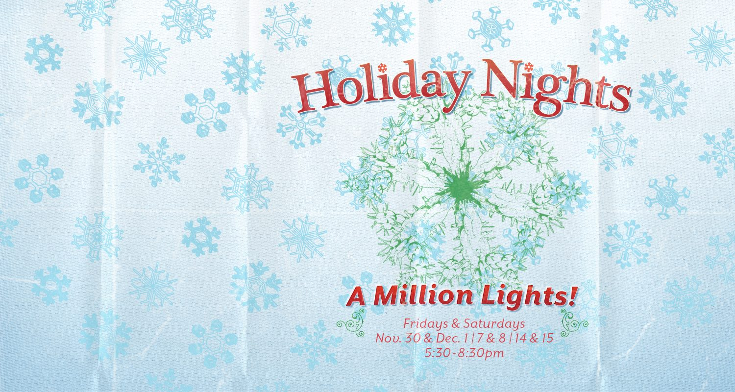 Holiday Nights_Homepage-Slider_FY19